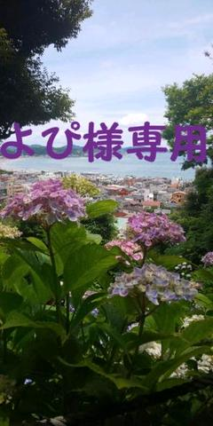 "Thumbnail of ""【よぴ様専用】ハンドメイドキーホルダー"""