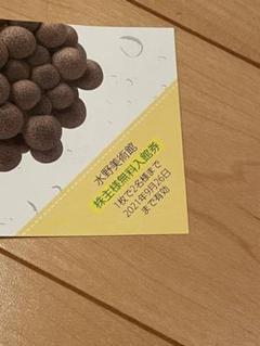 "Thumbnail of ""長野市 水野美術館 2名まで 無料入館券"""