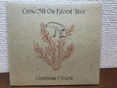 "Thumbnail of ""GRAHAM COXON /Crow Sit On Blood Tree CD"""
