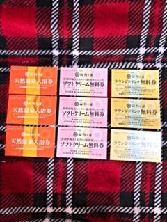 "Thumbnail of ""岩室温泉 ほてる大橋 入浴券&ドリンク券&ソフト券"""