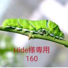 "Thumbnail of ""Hide様専用 レモン160g"""