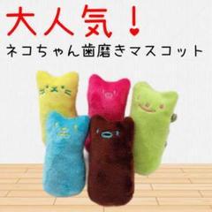 "Thumbnail of ""【5個セット】歯磨きマスコット 犬用 猫用 おもちゃ"""