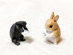 """Thumbnail of """"ウサギとカメの名刺交換"""""""