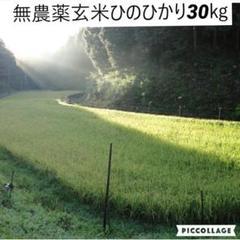 "Thumbnail of ""令和2年度産【湧き水栽培】無農薬玄米ひのひかり30㎏ 奈良の農家直送"""