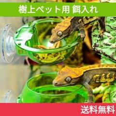 "Thumbnail of ""クレステッドゲッコーにピッタリ♪樹上性爬虫類用の餌皿"""