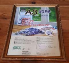 "Thumbnail of ""ナカバヤシ 額縁 A3"""