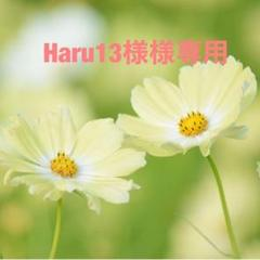"Thumbnail of ""Haru13様専用"""