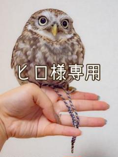 "Thumbnail of ""ヒロ様専用"""