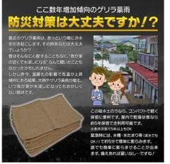 """Thumbnail of """"水で膨らむ 簡易吸水土のう袋10枚セット土嚢台風浸水豪雨洪水水害災害対策防止"""""""