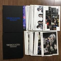 """Thumbnail of """"銀河遊牧史+ファイル THE BACK HORN ファンクラブ会誌"""""""