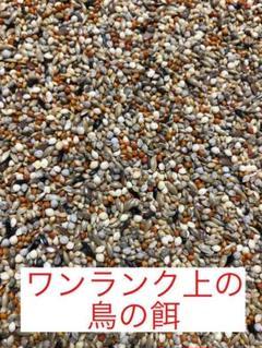 "Thumbnail of ""【☆1番人気商品】ワンランク上の鳥の餌 700g(皮付き)"""