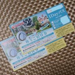 "Thumbnail of ""東京サマーランドフリーパス 株主優待券2枚"""