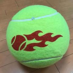 """Thumbnail of """"Wilson ビッグテニスボール"""""""