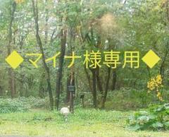 ◆マイナ様専用ページ◆