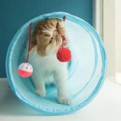 """Thumbnail of """"猫 おもちゃ トンネル ハウス ハント チューブ ボール 付き チャンネル"""""""