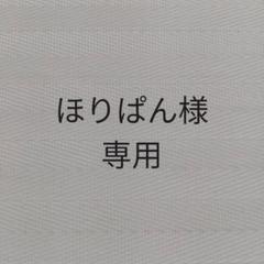 "Thumbnail of ""学習下敷き 日本地図したじき 知育玩具  社会 地理 小学生"""