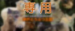 "Thumbnail of ""Sya-ku様 専用     大人2枚"""