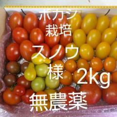"Thumbnail of ""ボカシ栽培の無農薬ミニトマト7種"""