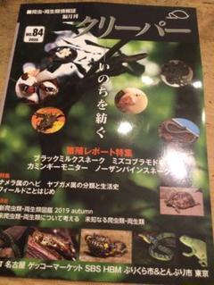 """Thumbnail of """"クリーパー 84号 爬虫類"""""""