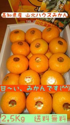 "Thumbnail of ""高知県産 山北ハウスみかん.送料無料.2,5k.Mサイズ"""