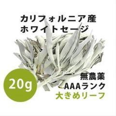 """Thumbnail of """"【無農薬】ホワイトセージ  高品質20g 解説マニュアル&チャック付きポリ袋"""""""