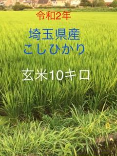 "Thumbnail of ""埼玉県産 コシヒカリ 玄米10キロ"""