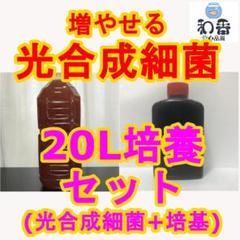 """Thumbnail of """"超お得!簡単培養■ 光合成細菌PSB20L培養SET クロレラと共にF"""""""