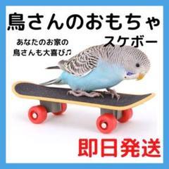 """Thumbnail of """"★即日発送★鳥さんスケボー バードトイ おもちゃ ハムスター 文鳥 インコ"""""""