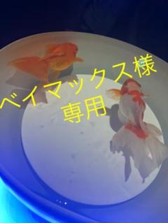 "Thumbnail of ""ポータブルDVDプレーヤー"""