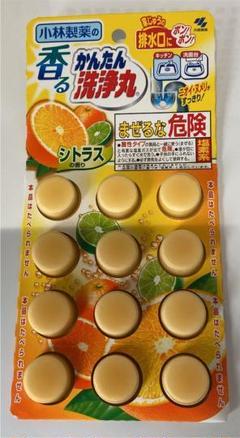 """Thumbnail of """"かんたん洗浄丸"""""""