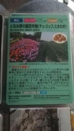 "Thumbnail of ""水の恵みカード となみ野の園芸作物"""