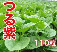 """Thumbnail of """"ベトナム つる紫 110粒"""""""