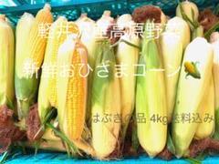"""Thumbnail of """"軽井沢産高原野菜 おひさまコーン とうもろこし 規格外品お得 4kg送料込"""""""