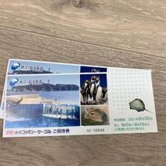 "Thumbnail of ""新江ノ島水族館 招待券 2枚"""