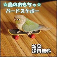 """Thumbnail of """"○ バードトイ 鳥さんスケボー 鳥おもちゃ 人気 送料無料"""""""