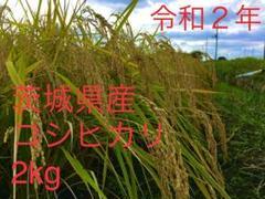 "Thumbnail of ""お米 (精米済み)2kg 茨城県産コシヒカリ セール"""