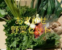 "Thumbnail of ""野菜セット  野菜詰め合わせ"""