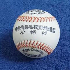 "Thumbnail of ""神奈川県高校野球連盟 公認球 甲子園 選抜 センバツ"""