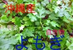 "Thumbnail of ""沖縄産 無農薬 フーチバー★よもぎ10苗"""