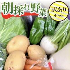 "Thumbnail of ""【訳あり】農園直送野菜セット 露地栽培で育った 野菜5~6種の詰め合わせ 減農薬"""