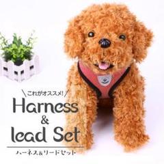 """Thumbnail of """"ハーネス リード セット"""""""