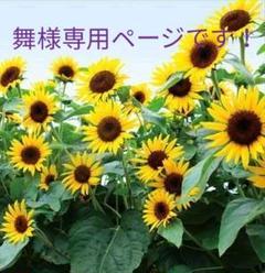 """Thumbnail of """"レクレア サプリメント //パイナップル味  10p"""""""