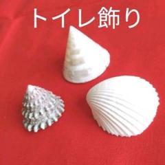 "Thumbnail of ""トイレ 貝がら 貝殻 飾り 貝♥️ 3個セット 装飾 海 インテリア 気分転換!"""