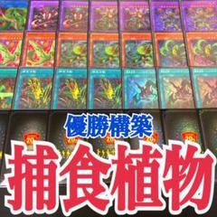 "Thumbnail of ""遊戯王 捕食植物(プレデター・プランツ)   優勝構築デッキ"""