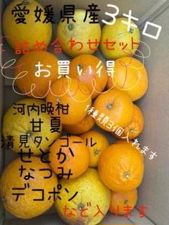 """Thumbnail of """"愛媛県産 詰め合わせセット3kg"""""""