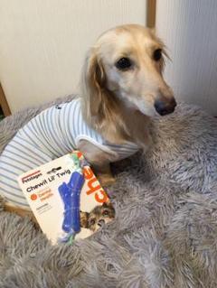 """Thumbnail of """"ペットステージ 犬用おもちゃ オルカ・ツイッグ"""""""