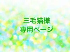 "Thumbnail of ""三毛猫様専用ページ"""