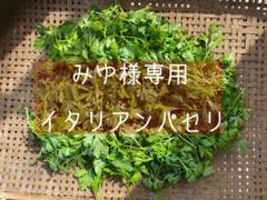 """Thumbnail of """"みゆ様専用 イタリアンパセリ 50g 東京都青梅産 無農薬"""""""