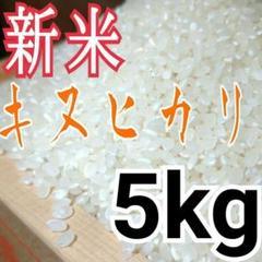 "Thumbnail of ""無洗米OK 令和2年度 埼玉県産  キヌヒカリ 白米5kg 精米料込み"""
