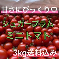 """Thumbnail of """"フルーツ⁈甘すぎるミニトマト『シュガープラム』3kg 送料込み"""""""